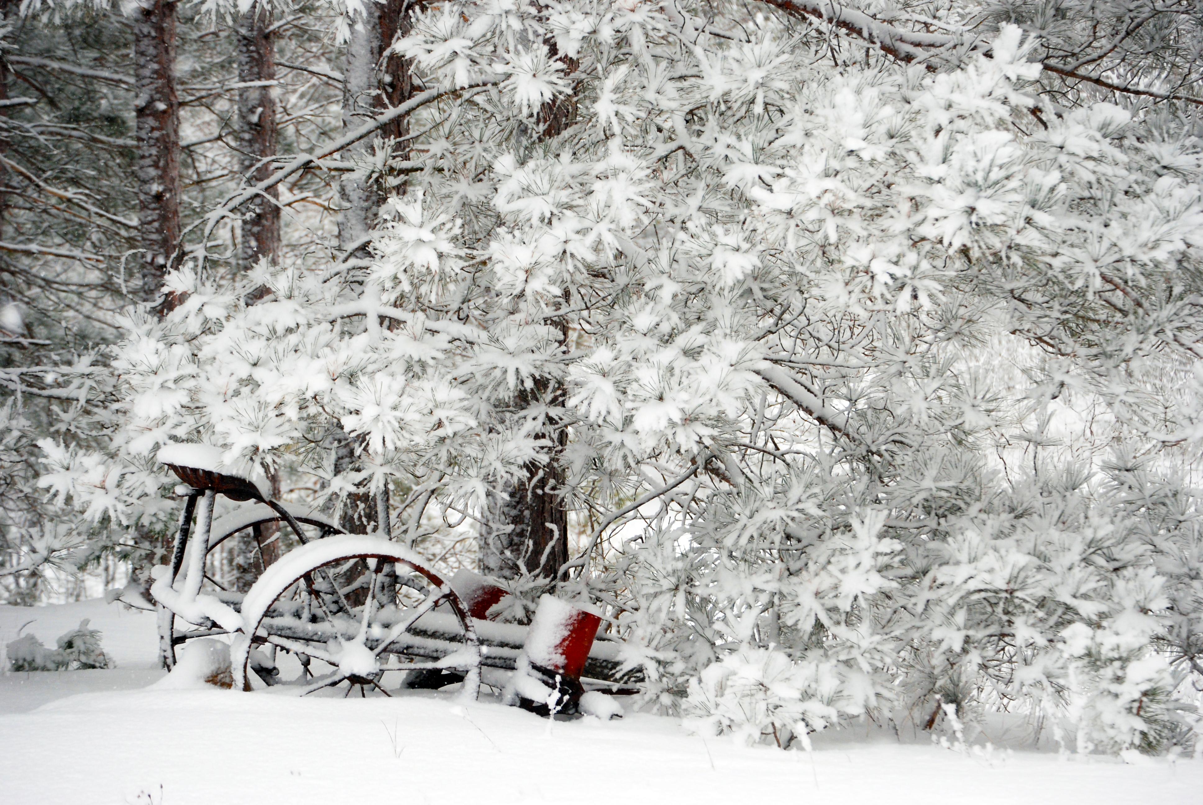 Snow-wagon